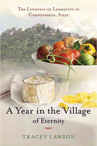 an image of the cover of the book: A Year in the Village of Eternity